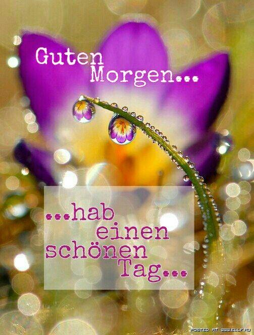 Pin Von Rena Langer Auf Sprüche Guten Morgen Romantisch