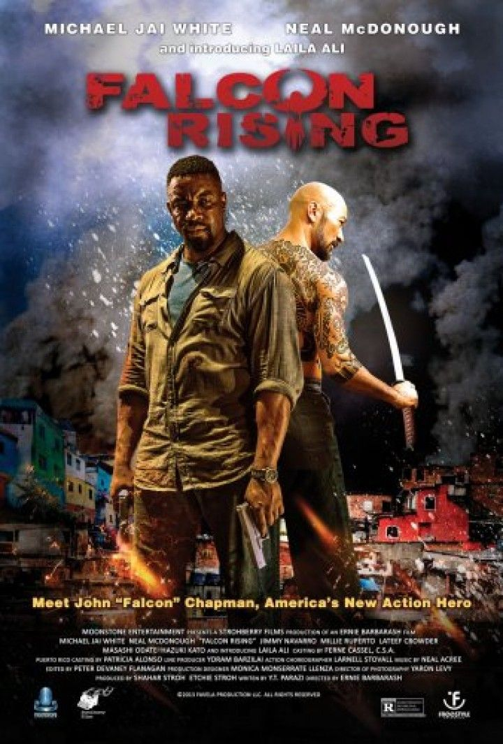 Falcon Rising 2014 Limited Proper Dvdrip X264 Michael Jai White Best Action Movies Free Movies Online
