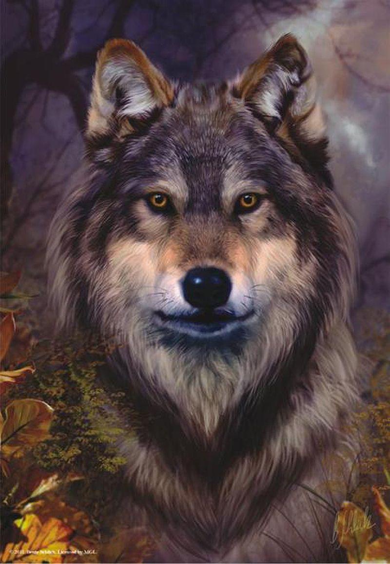 Картинки, картинки с волками