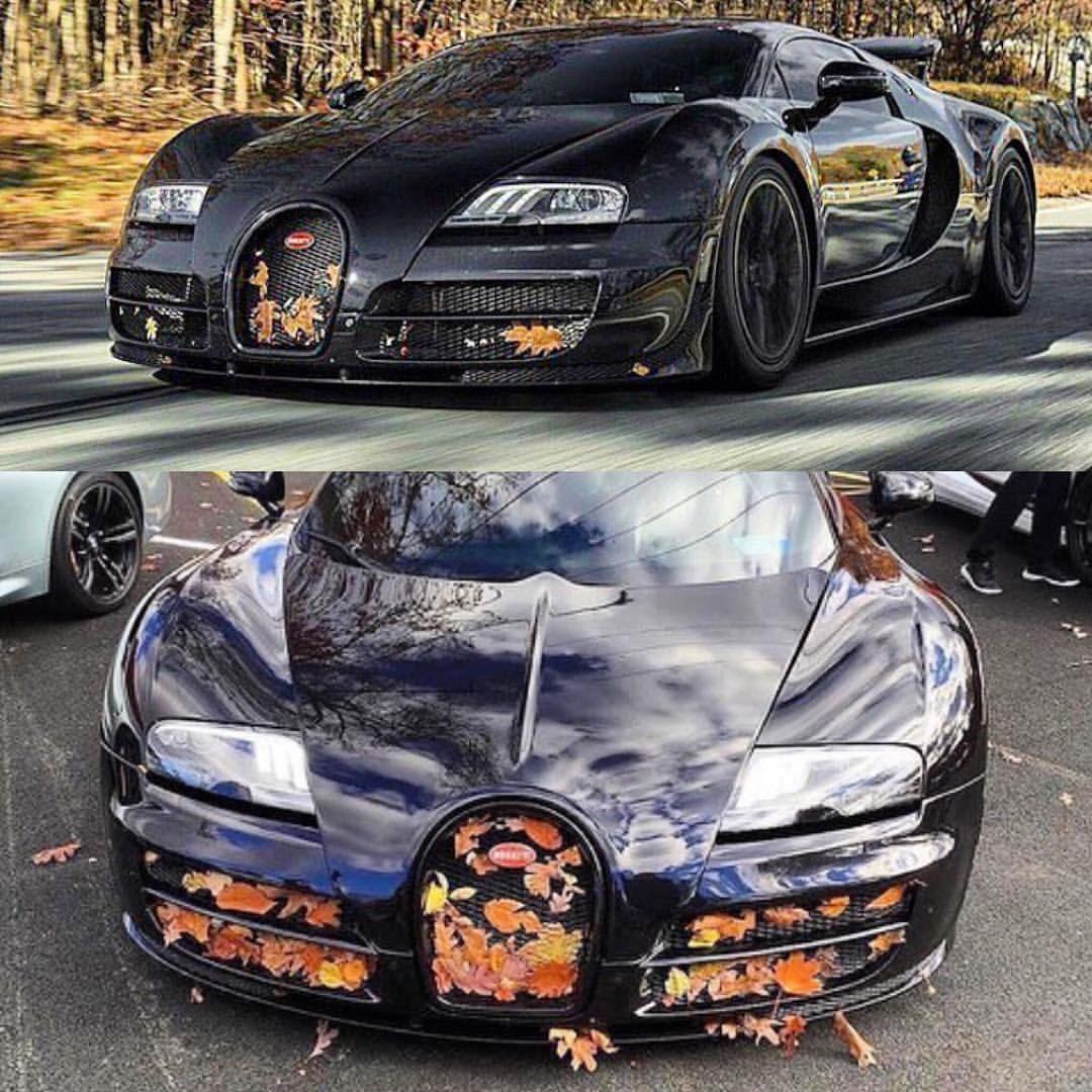 Bugatti Veyron Horsepower: Bugatti, Bugatti Veyron, Bugatti Chiron