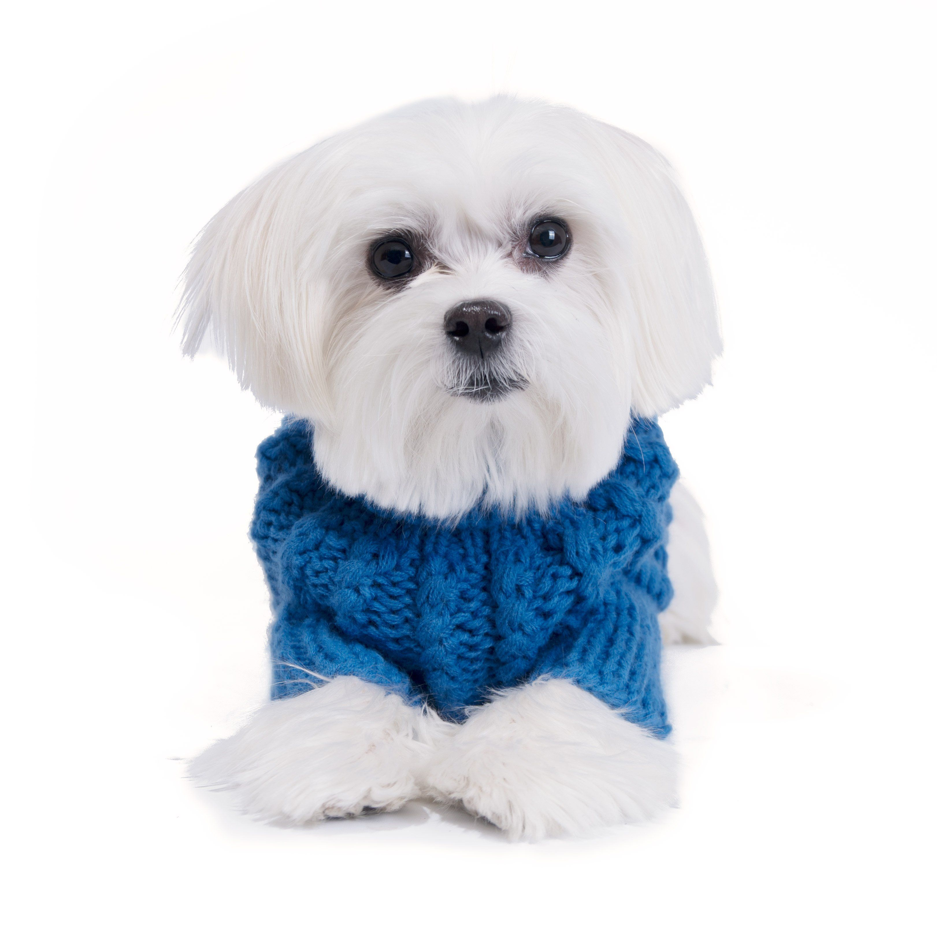 Chill Pups Blue Cable Knit Sweater Hand Knitted Sweaters Baby