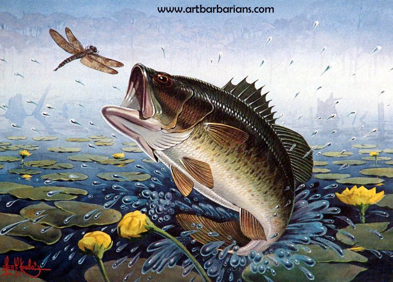 Bass fish art stamp 1981 bass research foundation stamp for Bass fishing art