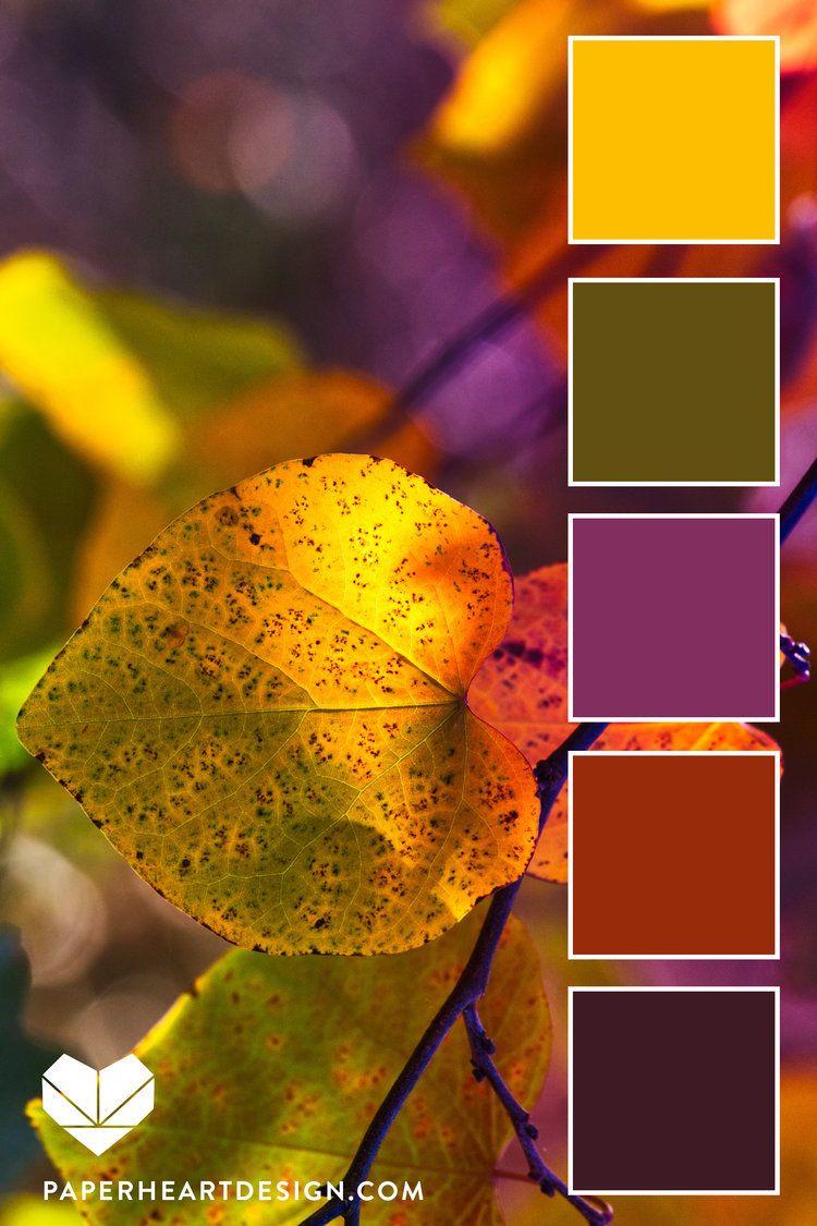 Color Palettes: Autumn Leaf Olive + Warm Tones