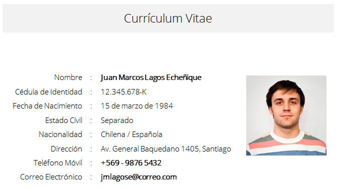 Formato Para Curriculum Vitae April Mydearest Co