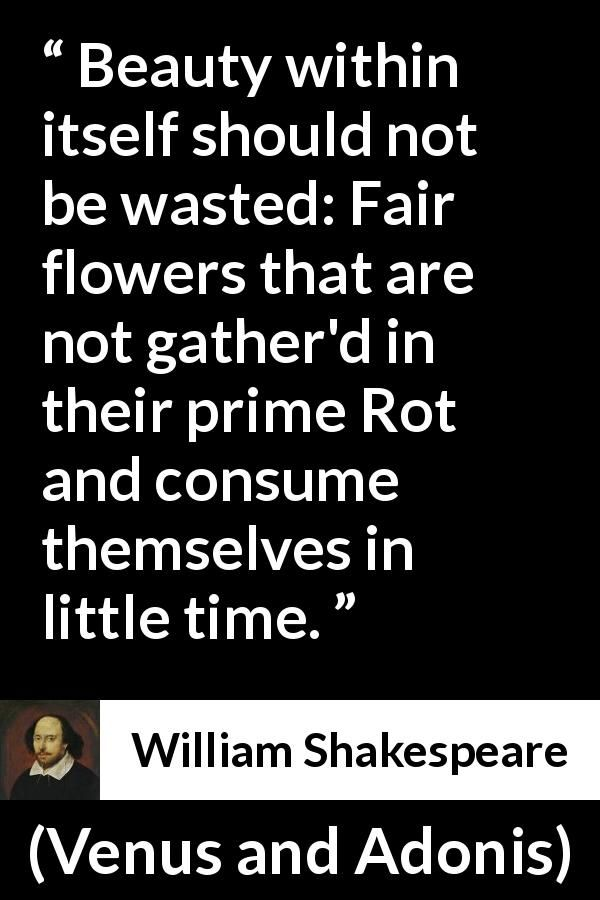 William Shakespeare About Flower Venus And Adonis 1593