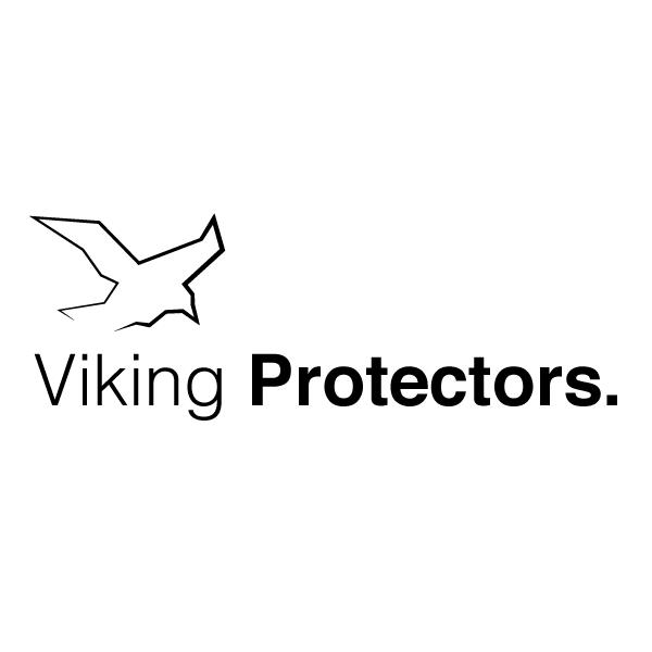 Viking Portectors Logo Concept Jeanchambras The Raven Symbol