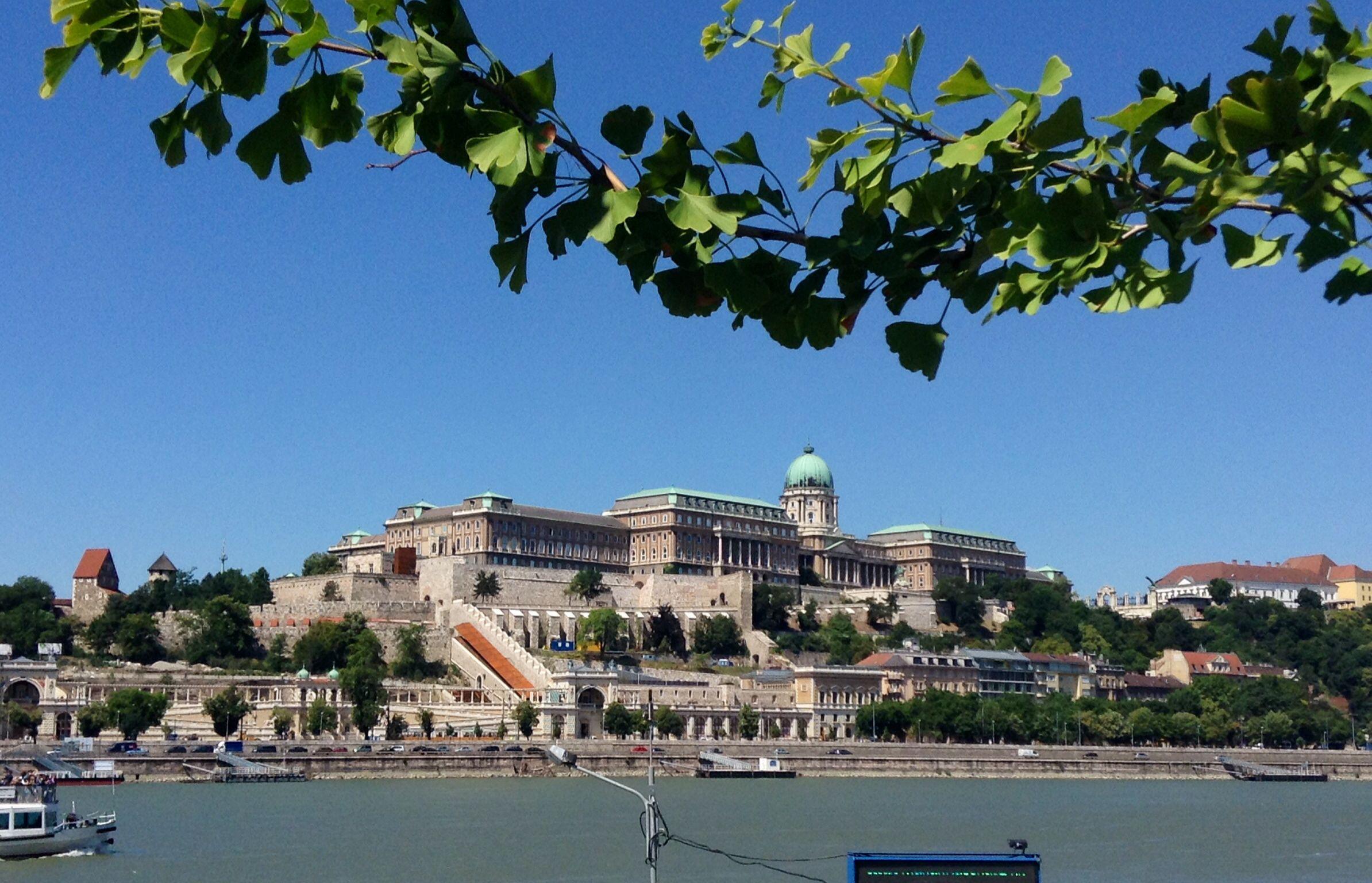 Dal Danubio
