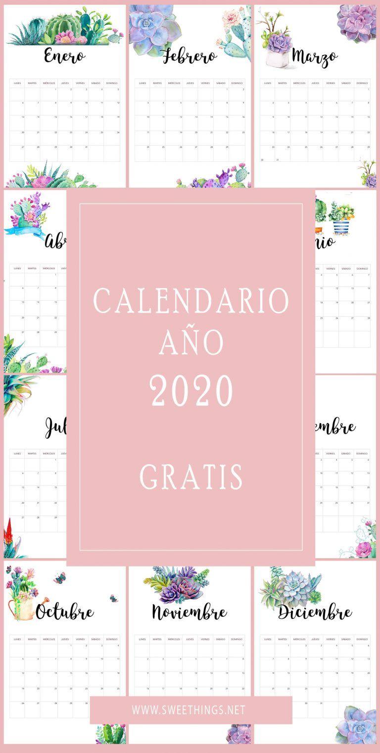 osos de peluche Calendario organizador familiar 2020 bloc de notas y bol/ígrafo lista de compras