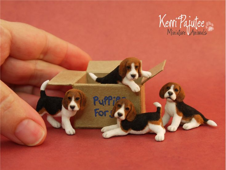 Miniature 1 12 Beagle Puppies By Pajutee Deviantart Com On