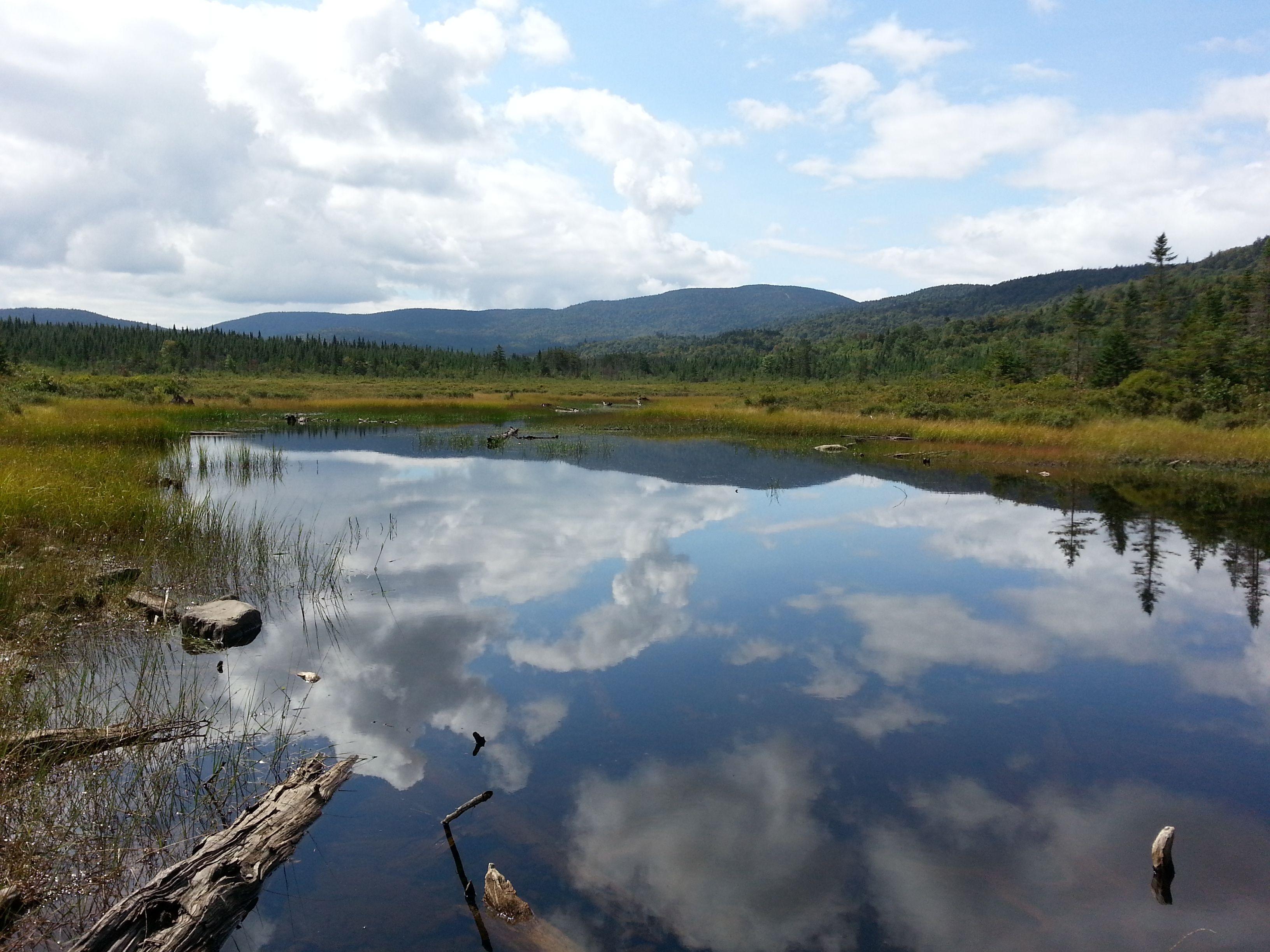 Rhubarb Pond Pittsburg Nh Fly Fishing Upper Conn