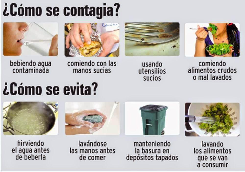 Prevención de Fiebre Tifoidea | Fiebre Tifoidea | Pinterest | Fiebre ...