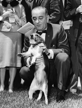 Lbj And His Dogs Lbj Loved Dogs Especially His Two Beagles Him