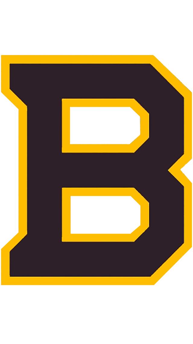 Boston Bruins 2019 Boston Bruins Logo Boston Bruins Boston Bruins Hockey