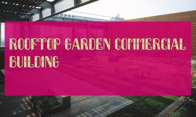 rooftop garden commercial building  roof garden commercial building  buildin