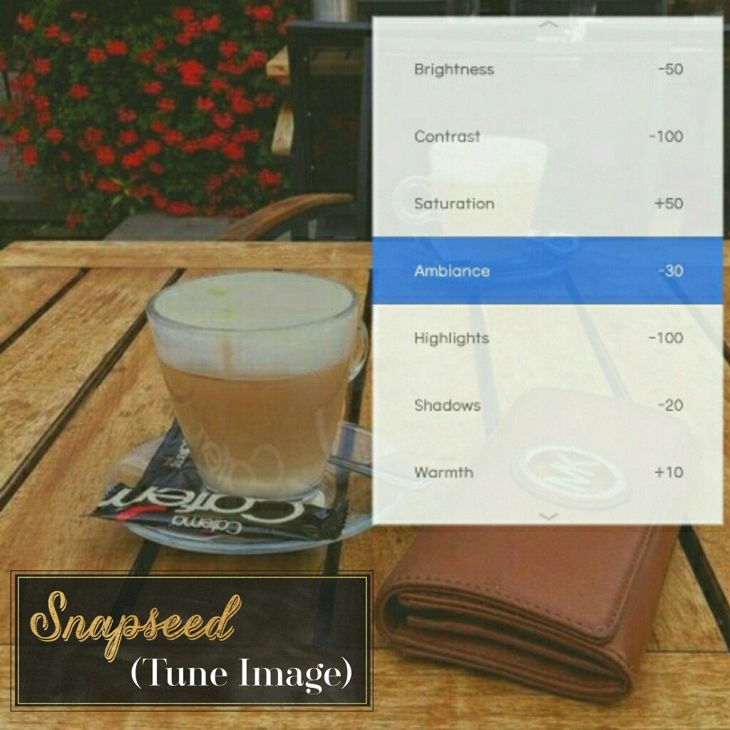 snapseed filters guide