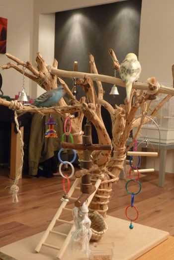 zelf parkieten speelgoed maken van hout