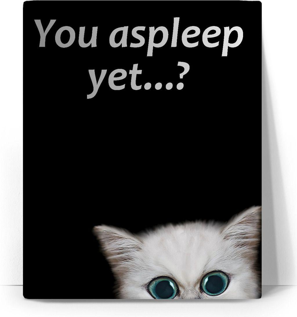 Cat stalker canvas art print you asleep yet naughty