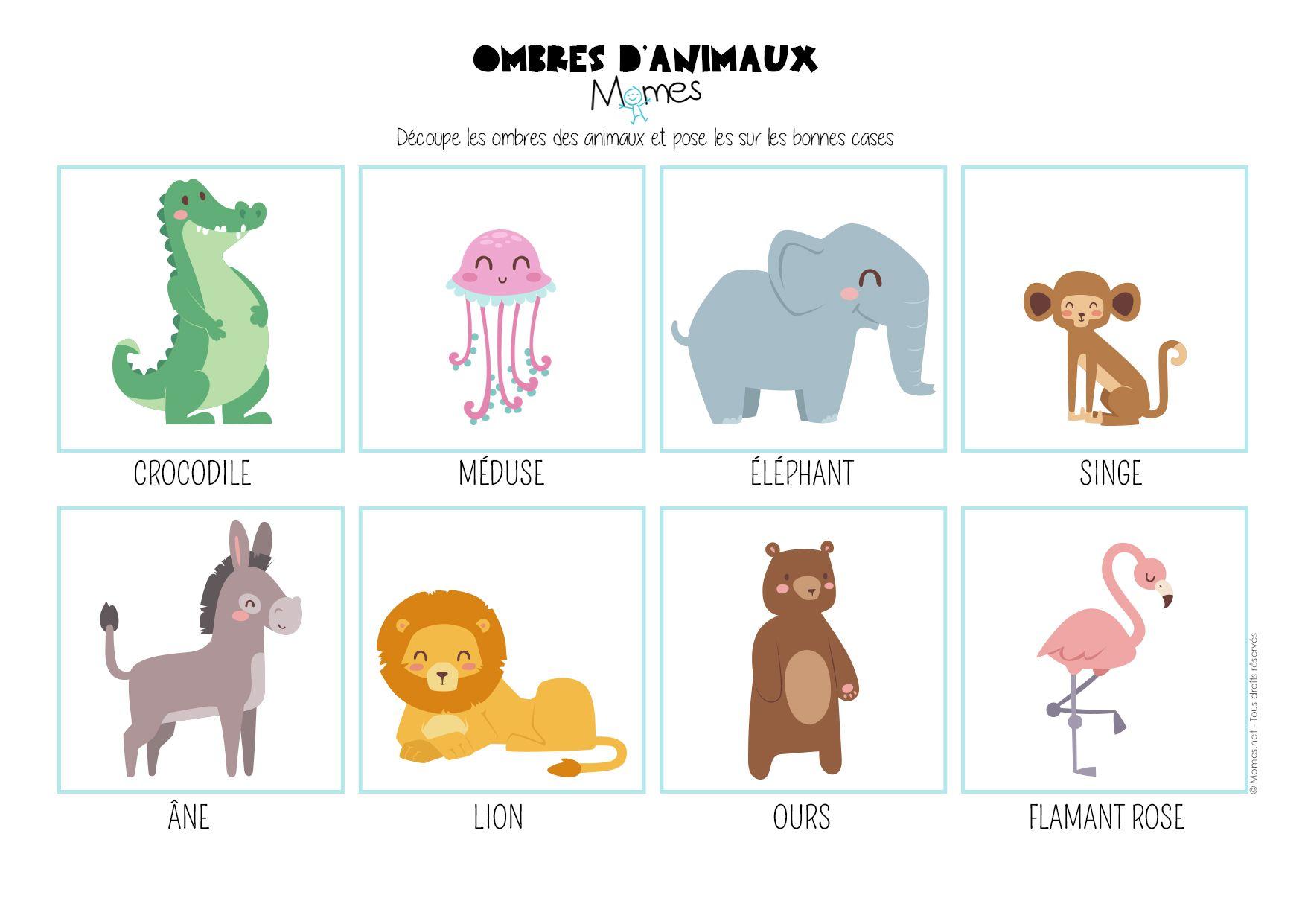 Le jeu des ombres d'animaux Animaux Jeux de société