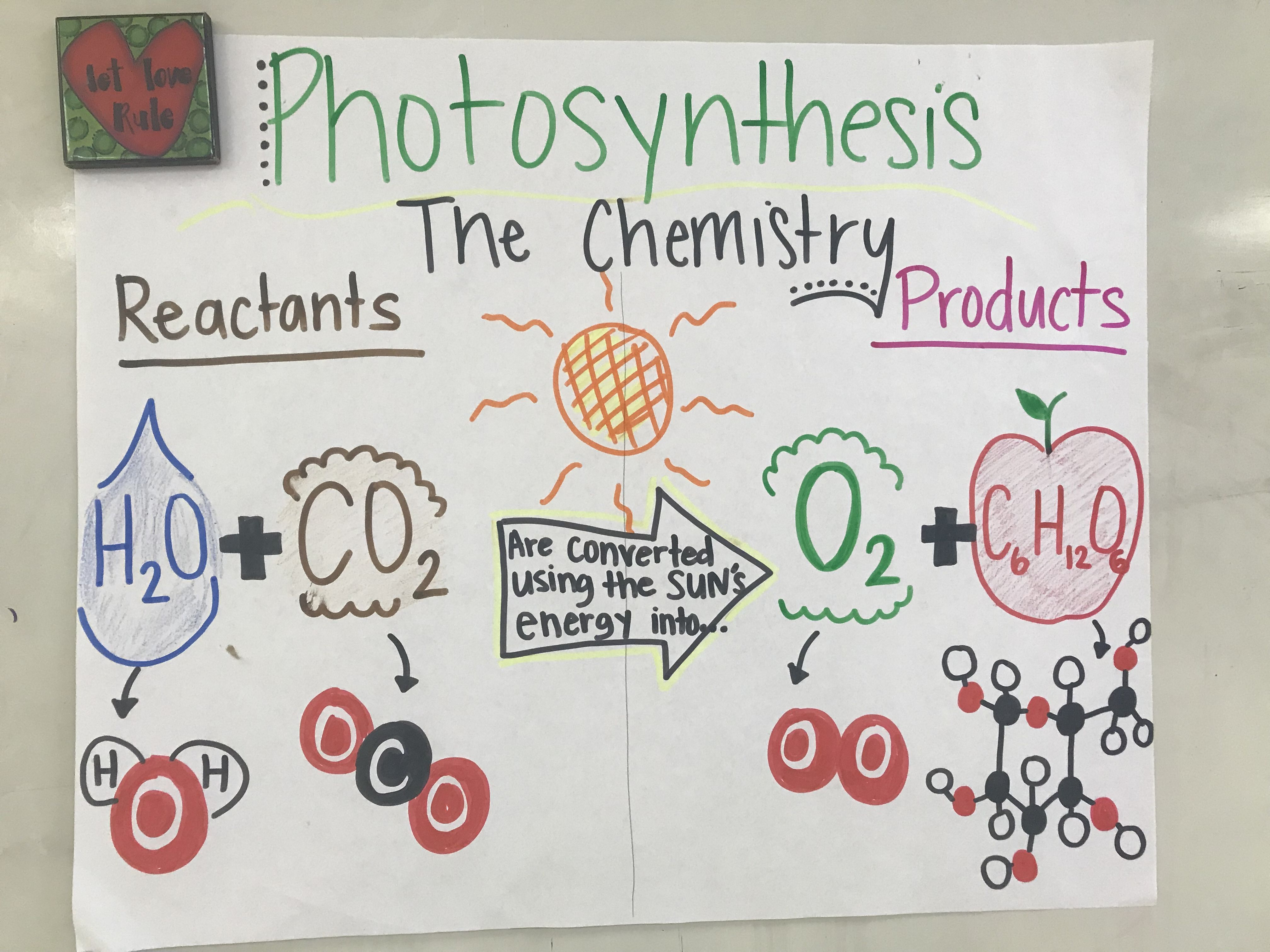 5th Grade Science Photosynthesis Photosynthesis And Cellular Respiration Photosynthesis Anchor Charts [ 3024 x 4032 Pixel ]