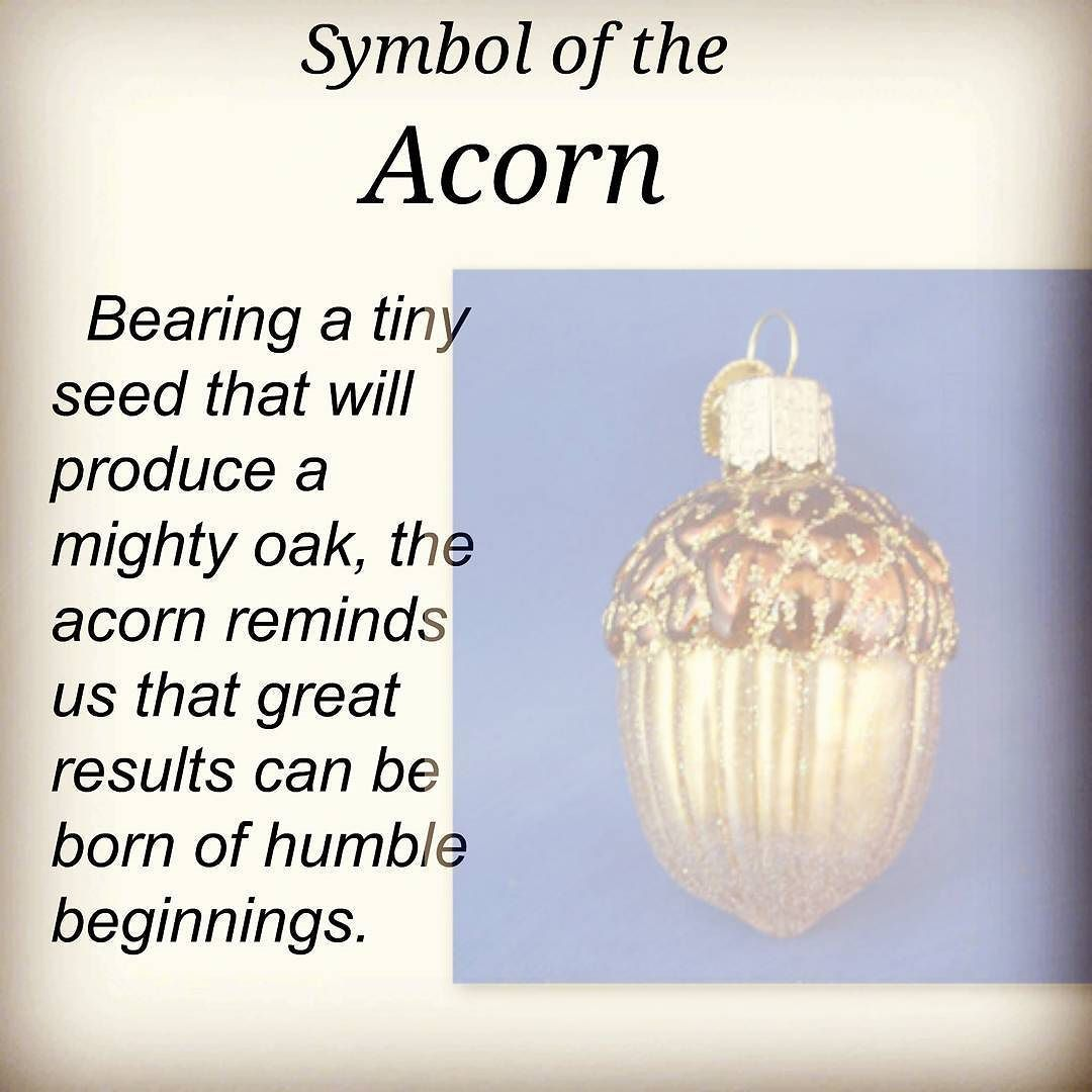 Love what the acorn symbolizes dont you knowing the legends love what the acorn symbolizes dont you knowing the legends symbols and buycottarizona Image collections