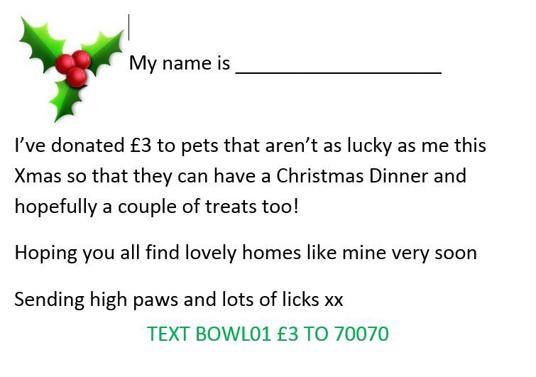 Please ask your pet if they would like to support our #SantaPaws