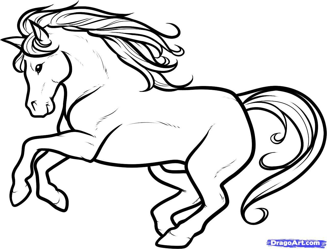 How to Draw a White Stallion, White Stallion, Step by Step