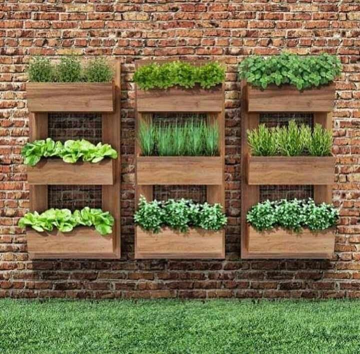 Herb Garden Vertical Diy