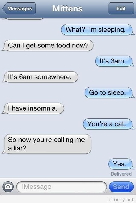 Funny phone conversation with cat   Funny Pictures   Funny ...