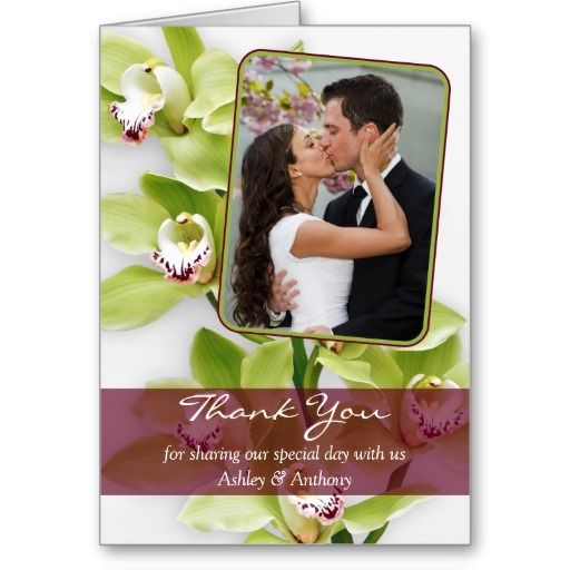 Green Cymbidium Orchid Wedding Thank You Card We have the best promotion for you and if you are interested in the related item or need more information reviews from the x customer who are own of them before please follow the link to see fully reviewsShopping          Green Cymbidium ...