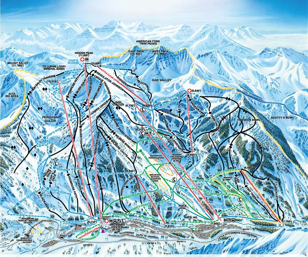 snowbird | been there, done that! in 2018 | pinterest | skiing