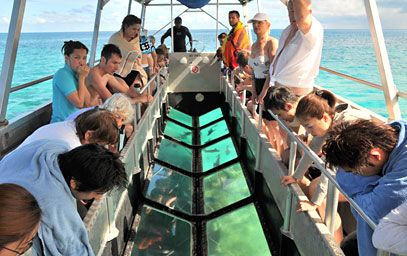 Amedee Island Glass Bottom Boat Trip New Caledonia School Groups Love This Destination For The Locality And French Influen Boat Trips Glass Bottom Boat Trip