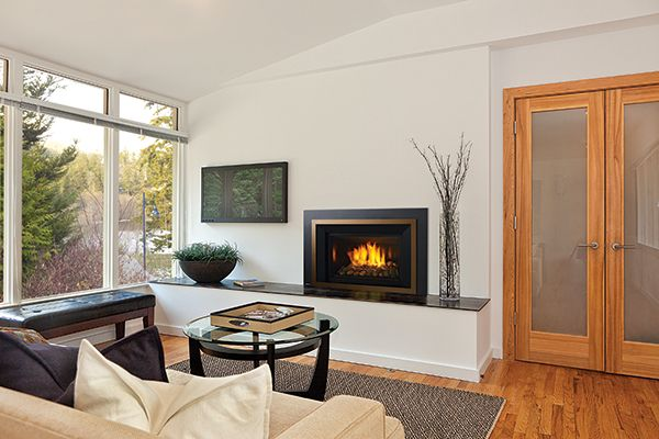 Fireplace Inserts and Stoves - Regency and Hampton ...