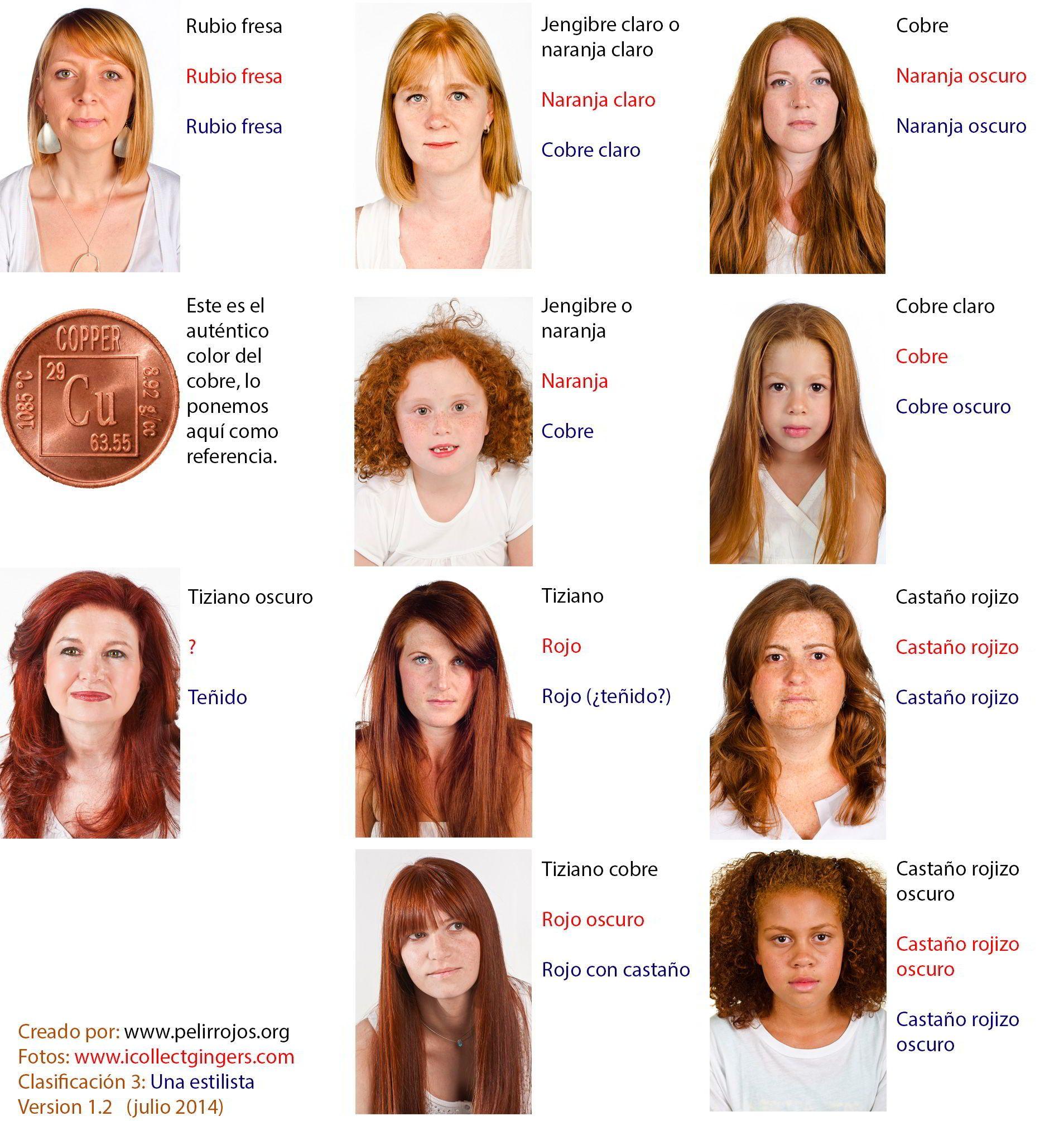 Resultado de imagen para tipos de color de piel que