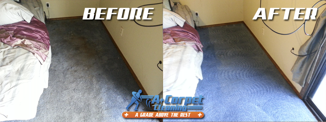 Professional Truck Mount Carpet Cleaning Before And After Shoot 46 For A Plus Carpet Cleanin How To Clean Carpet Carpet Cleaning Company Carpet Cleaning Hacks
