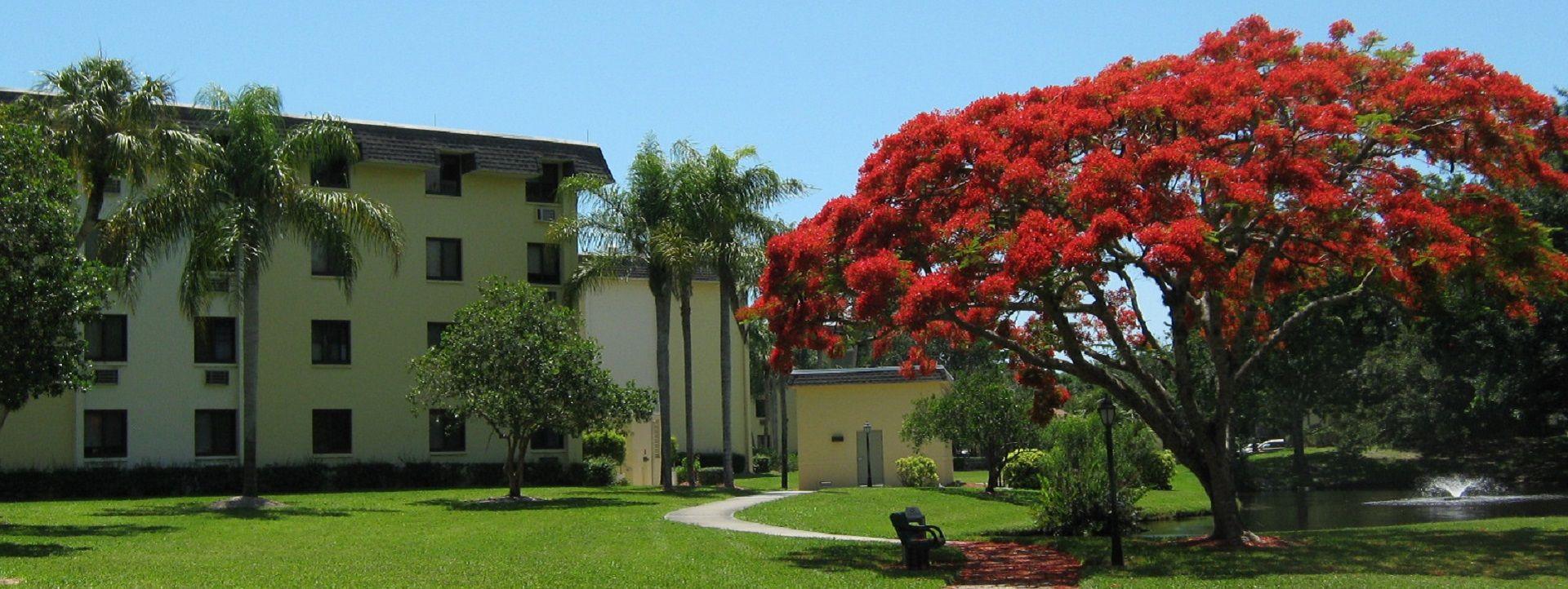 Goodlette Arms Apartments Hud Elderly Divine Naples Business Directory Goodlette Arms Apartments Hud Elderly 950 Florida Local Apartment Communities Naples