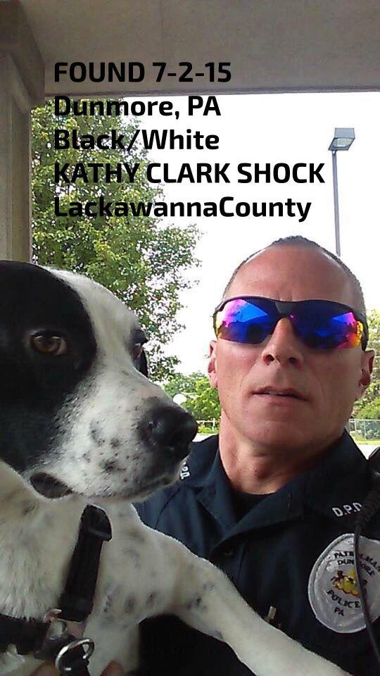 #FOUNDdog 7-2-15 #Dunmore #PA Black/White KATHY CLARK SHOCK #LackawannaCounty https://www.facebook.com/permalink.php?story_fbid=685086188264521&id=430069850432824