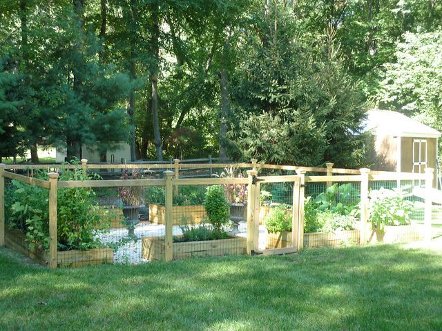 Vonne Whittleton Landscape/Gardening/Backyard Pinterest Garden