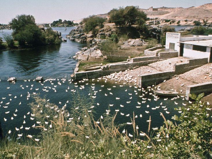 Ägypten ist ein Geschenk des Nils.