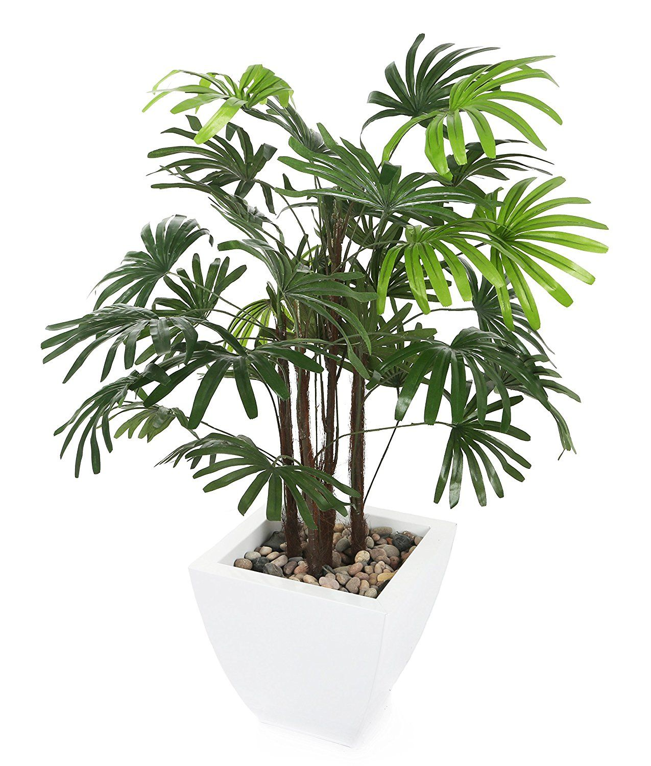 Closer To Nature Artificial 3ft Lady Palm Tree Artificial Silk Plant And Tree Range Continue To The Product At The Image Lin Plants Plants Uk Faux Plants
