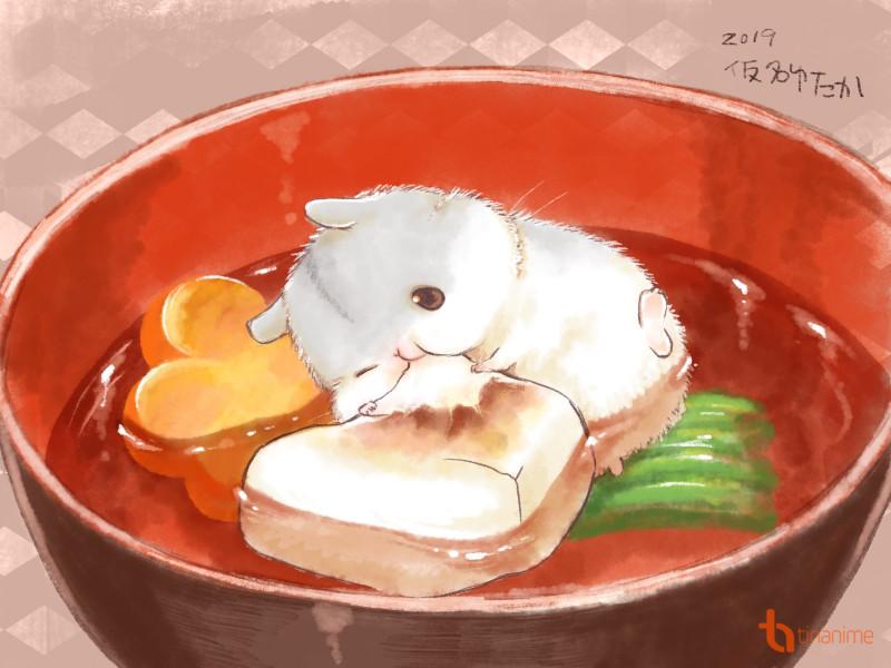 Bộ tranh hamster đáng yêu nhất quả đất