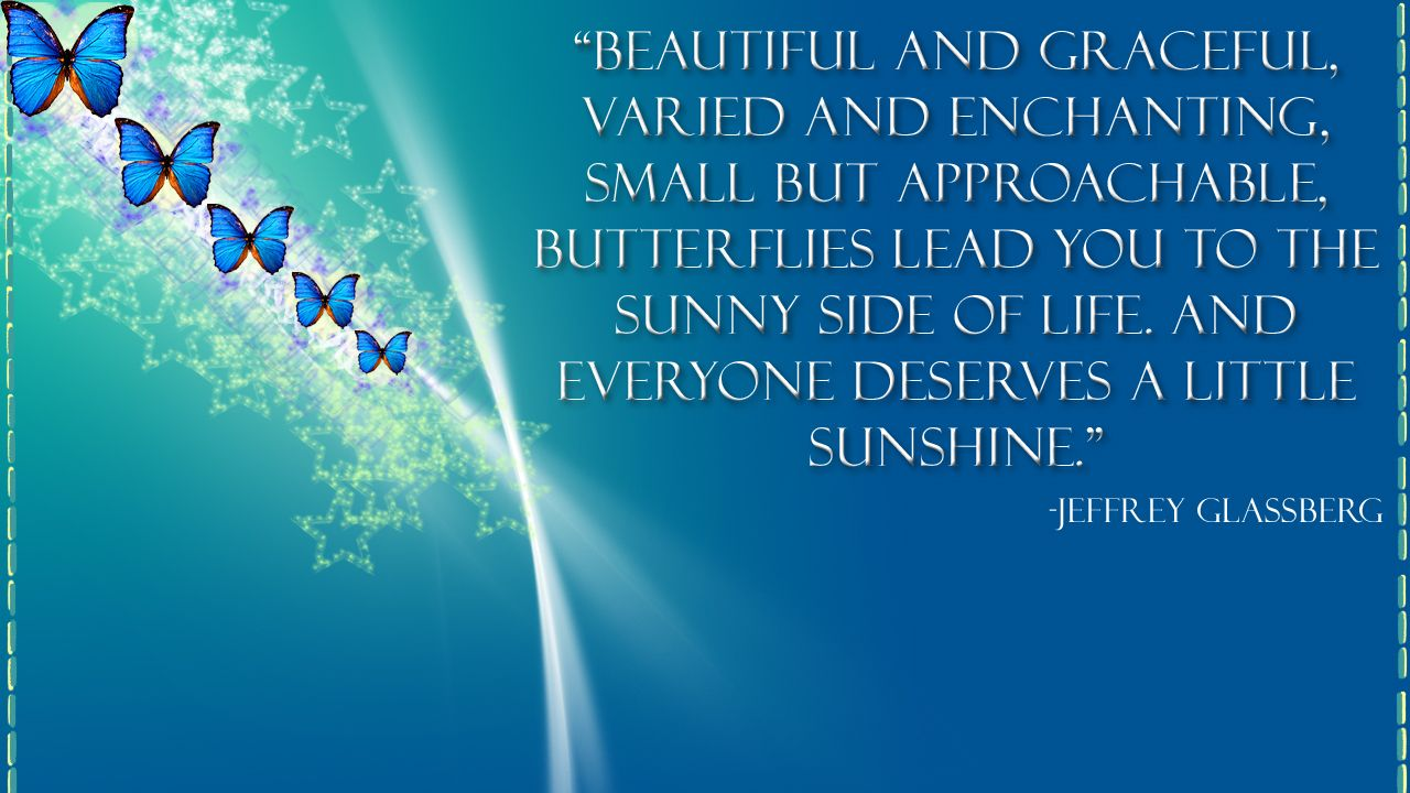 Butterfly quote wallpaper by smilekeeper on deviantART