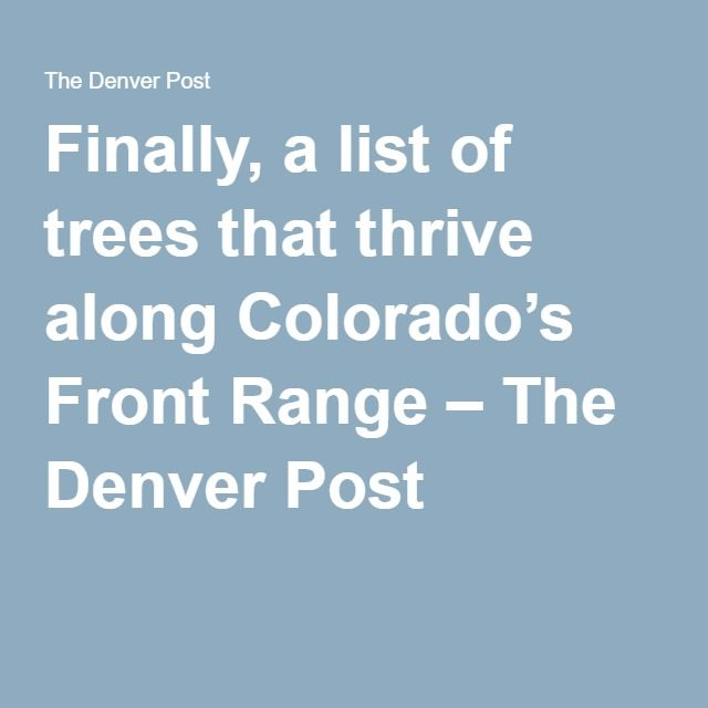Finally, a list of trees that thrive along Colorado's Front Range – The Denver Post