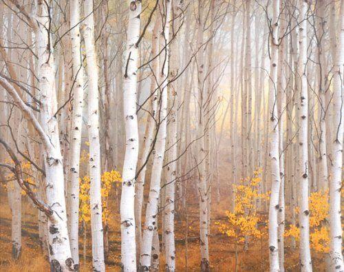 Aspen in Fog Charles Cramer Trees Landscape Picture Decor, 42x36, Gallery Quality Framed Art Print