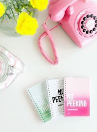Password organizer | No peeking inside  | Pink | Studio Stationery