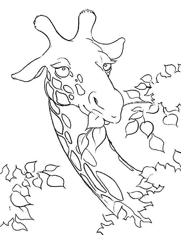 Giraffe coloring page Printables 2 Pinterest Giraffe