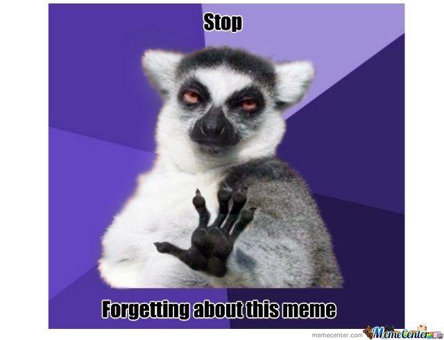 681e0bd55d9b028eb91297ca6d65695f Картинки по запросу lemur meme funny pinterest