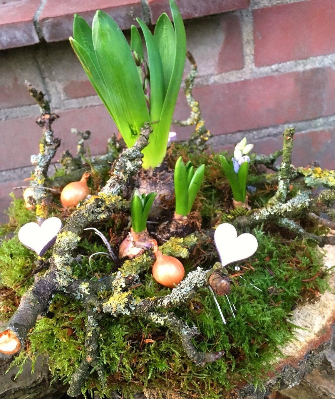 Photo of Decennio primaverile, bel nido di fiori ~ Decorazione primaverile ~ Primavera