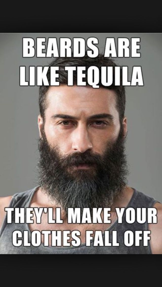 Pin by Greg Wilson on Memes | Beard humor, Funny beard ...