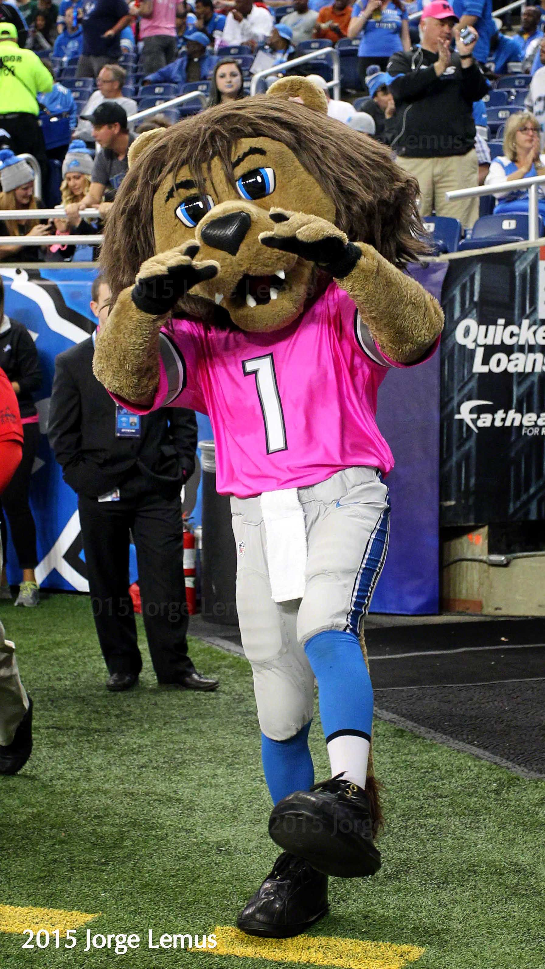 Fans And Mascot Roary At Ford Field During The Detroit Lions