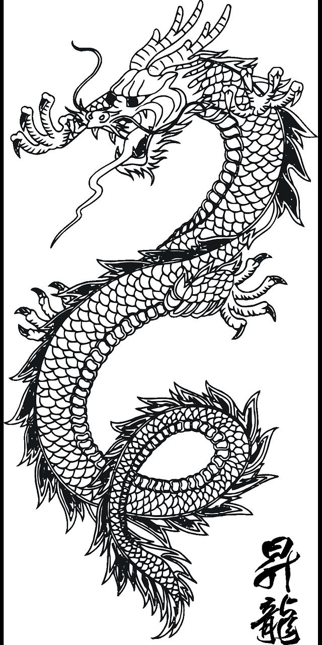 Free Image On Pixabay Dragon Lizard Monster Tattoo Japanische Drachen Tattoos Asiatischer Drachen Tattoo Drachentattoo